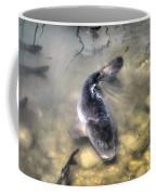 The King Of The Pond Coffee Mug
