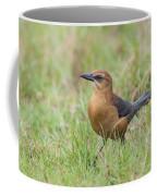 The Lady Has Class Coffee Mug