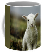 The Lamb Coffee Mug by Angel  Tarantella