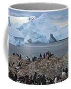 The Last Wilderness... Coffee Mug