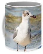The Laughing Gull Strut Coffee Mug