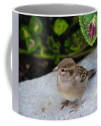 The Lilttle Beggar Coffee Mug