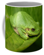 The Little Frog Coffee Mug