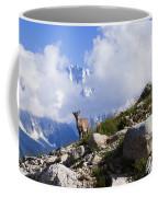 The Little Ibex Coffee Mug