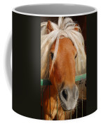 The Little Pony Coffee Mug