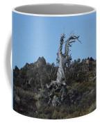 The Lone Juniper Coffee Mug