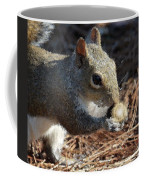 The Magic Acorn Coffee Mug