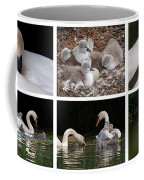 The Magic Of Spring Panorama Coffee Mug