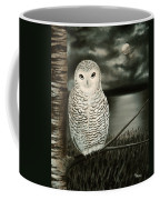 The Marsh At Night Coffee Mug