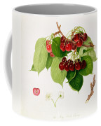 The May Duke Cherry Coffee Mug