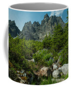 the Meadows Below Coffee Mug