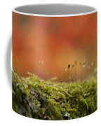 The Miniature World Of Moss  Coffee Mug by Anne Gilbert