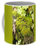 The Miniature World Of The Moss Coffee Mug