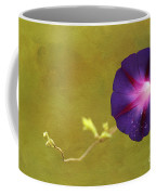The Morning Glory Coffee Mug by Darren Fisher