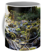 The Moss In The River Stones Coffee Mug