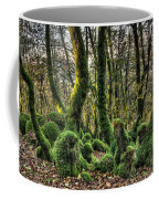 The Mossy Creatures Of The  Old Beech Forest 1 Coffee Mug