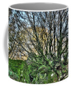 The Mossy Creatures Of The  Old Beech Forest 8 Coffee Mug