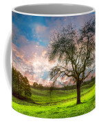 The Old Apple Tree At Dawn Coffee Mug