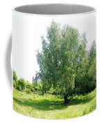 The Old Birch Tree Coffee Mug