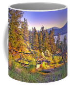 The Old Resting Place Coffee Mug