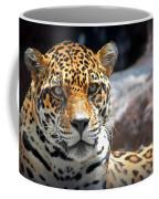 The Ole Leopard Don't Change His Spots Coffee Mug