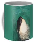 The Original Shamu Orca Whale At Sea World San Diego California 1967 Coffee Mug