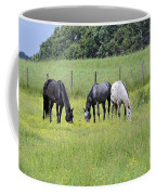 The Pasture Coffee Mug
