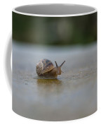 The Peeping Snail  Coffee Mug
