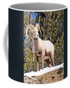 The Perfect Pose Coffee Mug