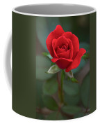 The Perfect Rose Coffee Mug