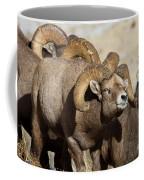 The Pied Piper Coffee Mug