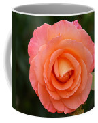 The Pink Rose Coffee Mug