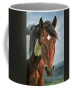 The Pinto Horse Portrait Coffee Mug