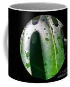 The Pm Dew Coffee Mug