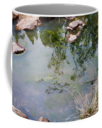 The Pond At The Top Of The Falls Coffee Mug