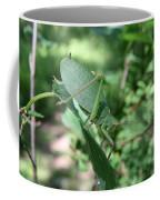 The Pondering Soul Coffee Mug