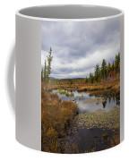 The Ponds Near Raquette Lake Coffee Mug