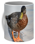 The Posing Duck Coffee Mug