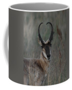 The Pronghorn 2 Dry Brushed Coffee Mug