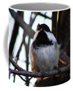 The Raised Eyebrow Coffee Mug