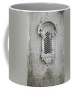 The Rajput Window Coffee Mug