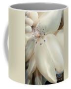 The Rare Colemans Coral Shrimp Coffee Mug