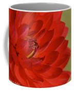 The Red Sun Dahlia Coffee Mug