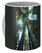 The Redwood Giants Coffee Mug