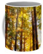 The Redwoods Of Florence Keller Park Coffee Mug