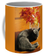 The Restful Leaves If Fall Coffee Mug