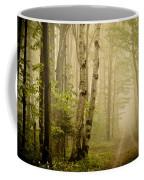 The Road Through The Woods Coffee Mug