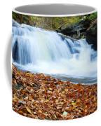 The Rushing Waterfall Coffee Mug