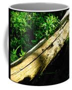 The Sapling Coffee Mug