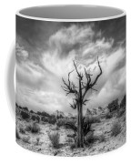 The Sentinal South Coyote Buttes Coffee Mug